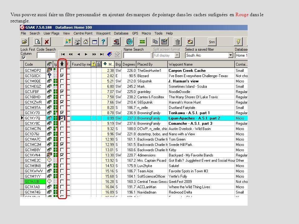 Vous pouvez aussi faire un filtre personnalisé en ajoutant des marques de pointage dans les caches surlignées en Rouge dans le rectangle.