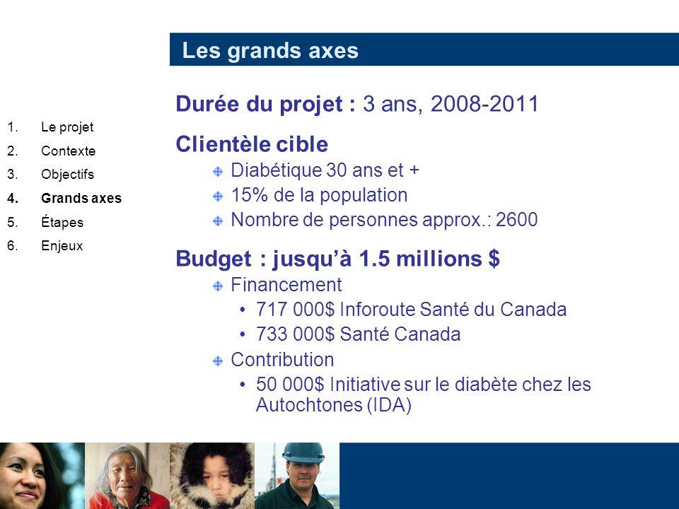 Les grands axes Durée du projet : 3 ans, 2008-2011 Clientèle cible Diabétique 30 ans et + 15% de la population Nombre de personnes approx.: 2600 Budge