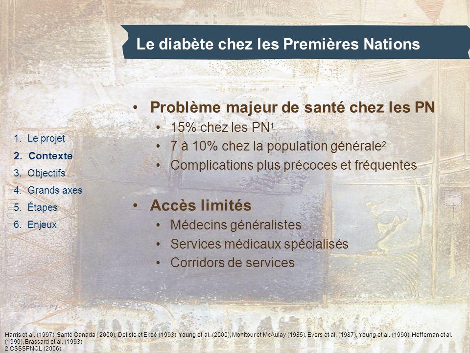 Le diabète chez les Premières Nations 1. Le projet 2. Contexte 3. Objectifs 4. Grands axes 5. Étapes 6. Enjeux Problème majeur de santé chez les PN 15