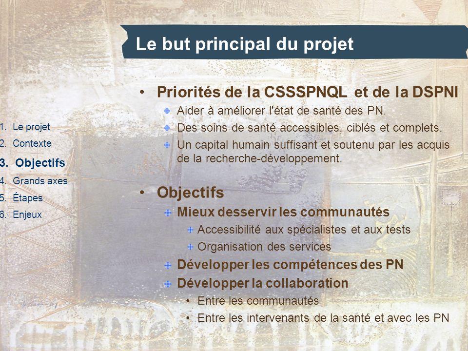 Le but principal du projet 1. Le projet 2. Contexte 3. Objectifs 4. Grands axes 5. Étapes 6. Enjeux Priorités de la CSSSPNQL et de la DSPNI Aider à am