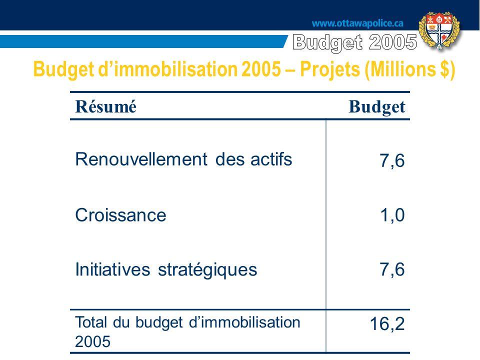 RésuméBudget Renouvellement des actifs7,6 Croissance1,0 Initiatives stratégiques7,6 Total du budget dimmobilisation 2005 16,2 Budget dimmobilisation 2005 – Projets (Millions $)