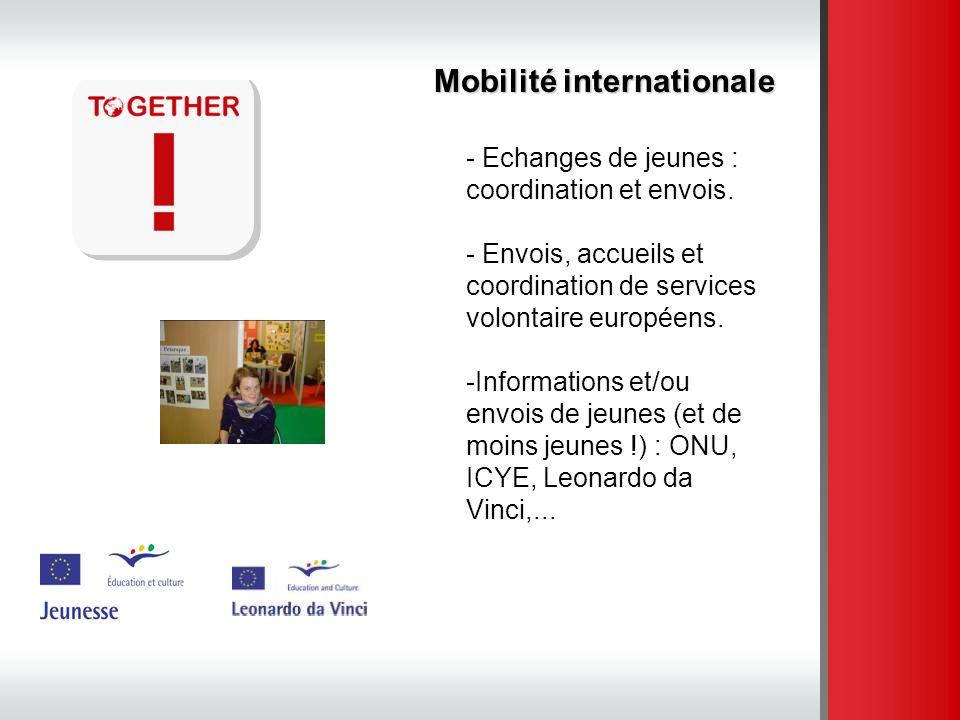 Mobilité internationale - Echanges de jeunes : coordination et envois. - Envois, accueils et coordination de services volontaire européens. -Informati