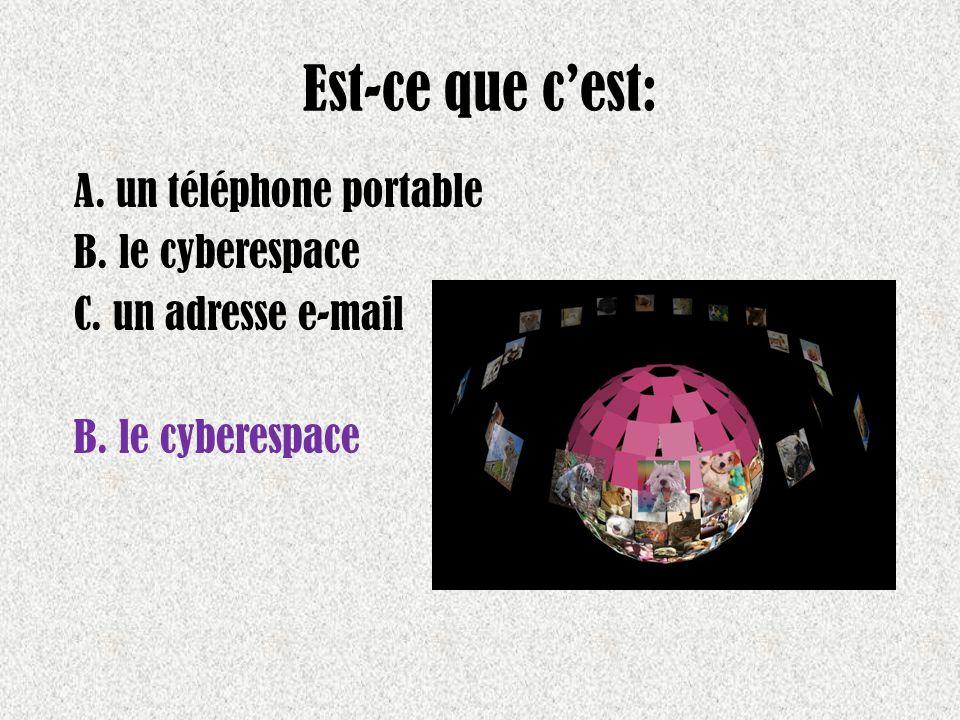 Est-ce que cest: A. un téléphone portable B. le cyberespace C. un adresse e-mail B. le cyberespace
