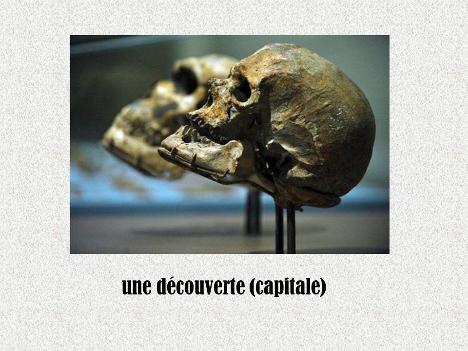 une découverte (capitale)