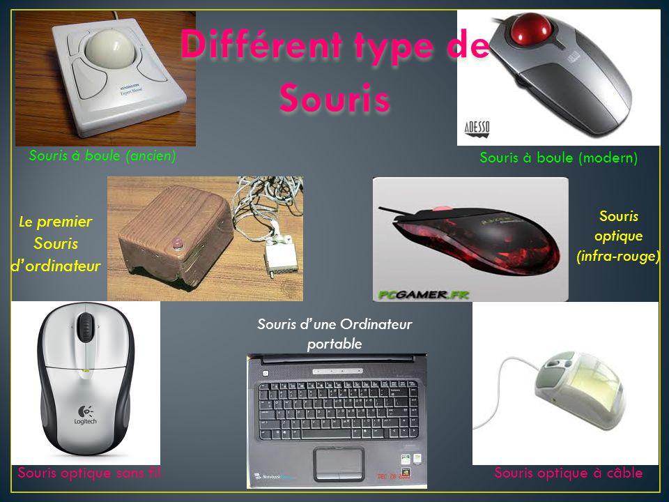 Le premier Souris dordinateur Souris dune Ordinateur portable Souris optique (infra-rouge) Souris à boule (ancien) Souris à boule (modern) Souris opti