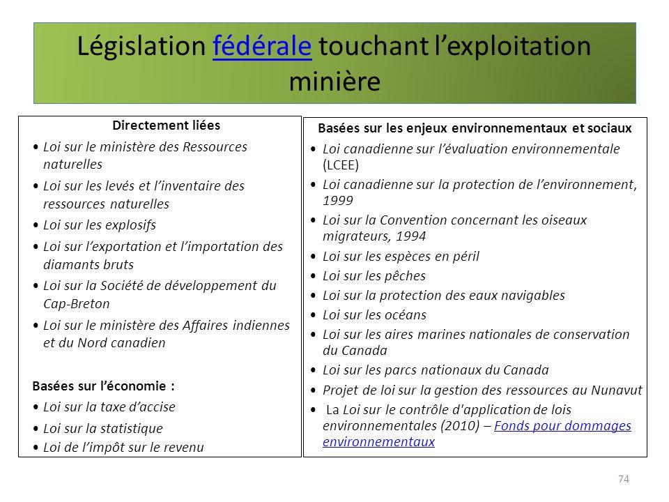 Législation fédérale touchant lexploitation minièrefédérale 74 Directement liées Loi sur le ministère des Ressources naturelles Loi sur les levés et l