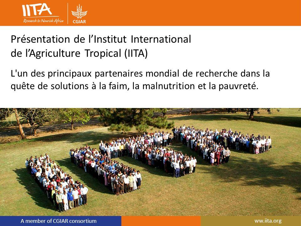 A member of CGIAR consortium ww.iita.org Présentation de lInstitut International de lAgriculture Tropical (IITA) L'un des principaux partenaires mondi