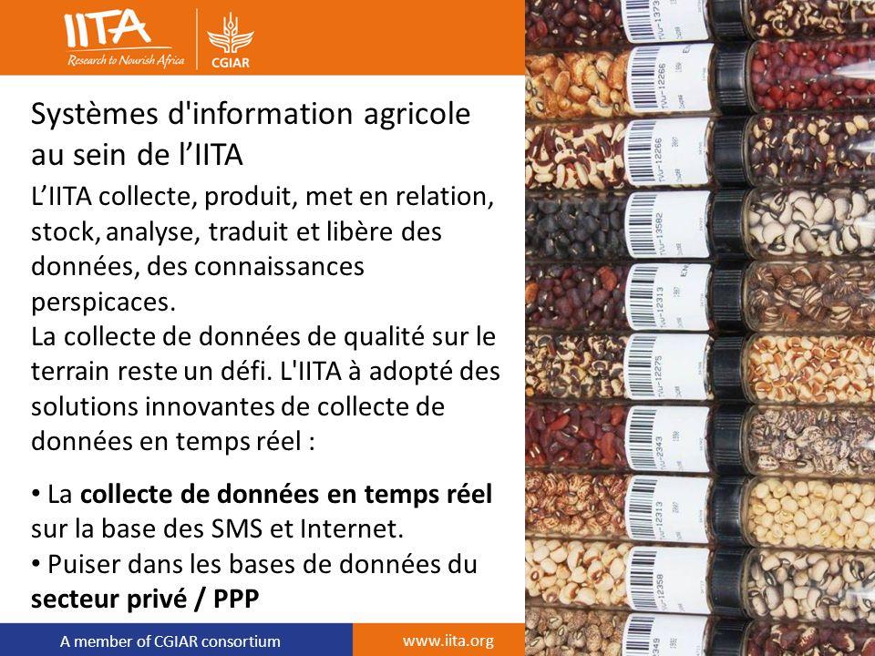 A member of CGIAR consortium Systèmes d'information agricole au sein de lIITA LIITA collecte, produit, met en relation, stock, analyse, traduit et lib