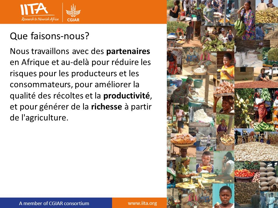 A member of CGIAR consortium www.iita.org Que faisons-nous? Nous travaillons avec des partenaires en Afrique et au-delà pour réduire les risques pour