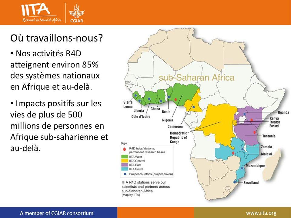 A member of CGIAR consortium www.iita.org Où travaillons-nous? Nos activités R4D atteignent environ 85% des systèmes nationaux en Afrique et au-delà.