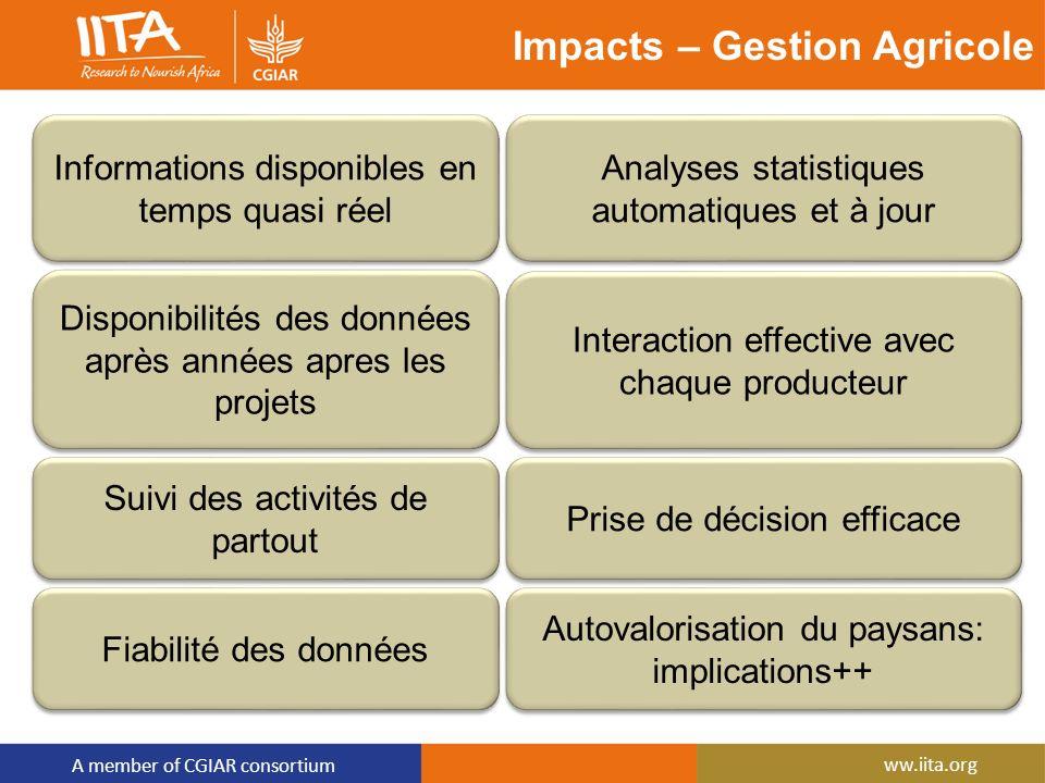 A member of CGIAR consortium ww.iita.org Impacts – Gestion Agricole AMELIORATION DE LA PRODUCTION ET DES REVENUS Informations disponibles en temps qua