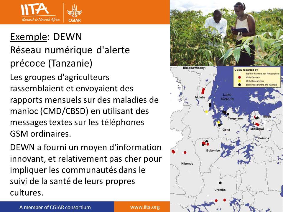 A member of CGIAR consortium Exemple: DEWN Réseau numérique d'alerte précoce (Tanzanie) Les groupes d'agriculteurs rassemblaient et envoyaient des rap