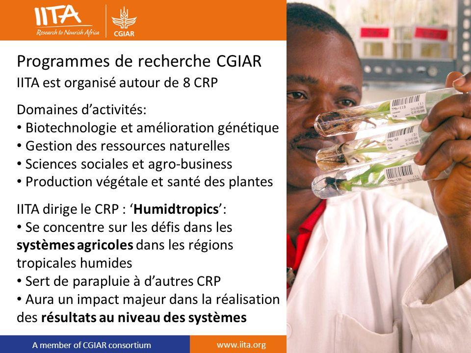A member of CGIAR consortium Programmes de recherche CGIAR IITA est organisé autour de 8 CRP Domaines dactivités: Biotechnologie et amélioration génét