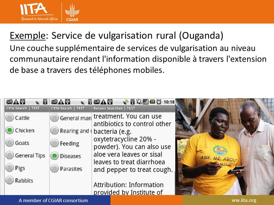 A member of CGIAR consortium Exemple: Service de vulgarisation rural (Ouganda) Une couche supplémentaire de services de vulgarisation au niveau commun