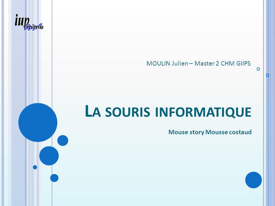 L A SOURIS INFORMATIQUE Mouse story Mousse costaud MOULIN Julien – Master 2 CHM GIIPS