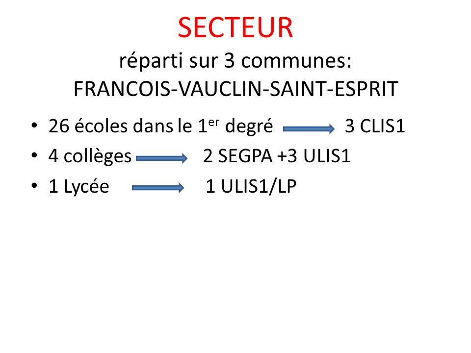 SECTEUR réparti sur 3 communes: FRANCOIS-VAUCLIN-SAINT-ESPRIT 26 écoles dans le 1 er degré 3 CLIS1 4 collèges 2 SEGPA +3 ULIS1 1 Lycée 1 ULIS1/LP