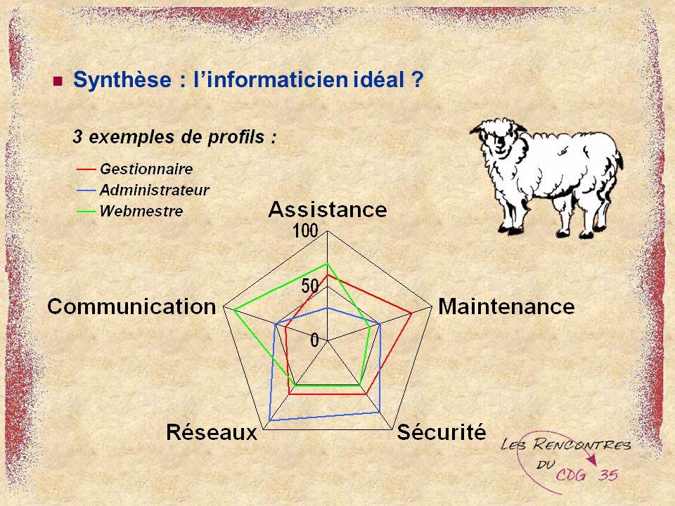 Synthèse : linformaticien idéal