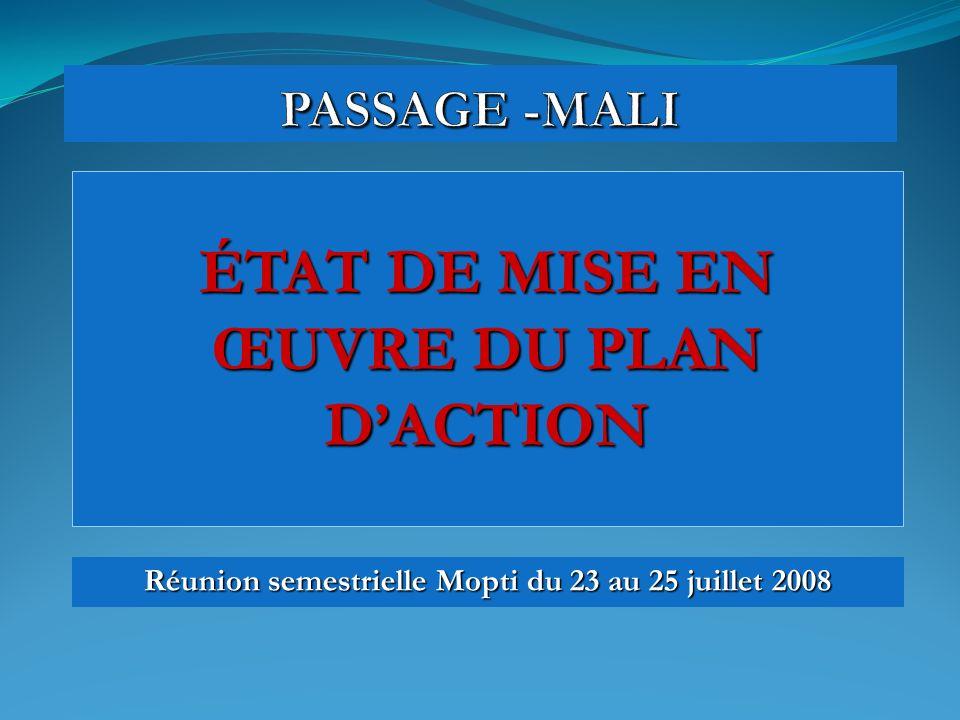 ÉTAT DE MISE EN ŒUVRE DU PLAN DACTION Réunion semestrielle Mopti du 23 au 25 juillet 2008