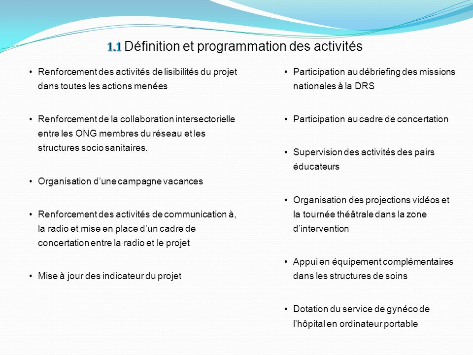 1.1 1.1 Définition et programmation des activités Renforcement des activités de lisibilités du projet dans toutes les actions menées Renforcement de l