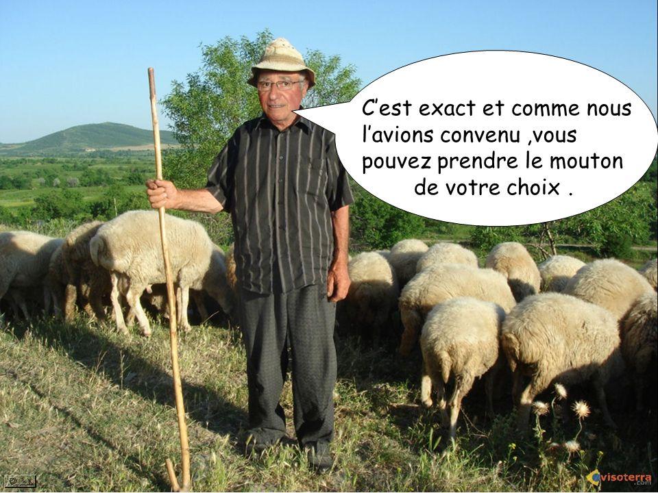 Cest exact et comme nous lavions convenu,vous pouvez prendre le mouton de votre choix.