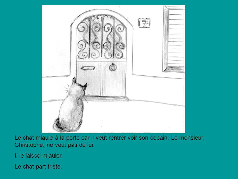 Le chat miaule à la porte car il veut rentrer voir son copain. Le monsieur, Christophe, ne veut pas de lui. Il le laisse miauler. Le chat part triste.