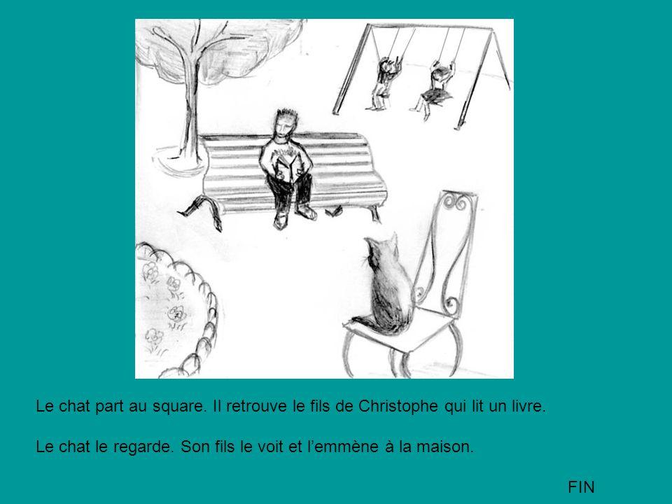 Le chat part au square. Il retrouve le fils de Christophe qui lit un livre. Le chat le regarde. Son fils le voit et lemmène à la maison. FIN