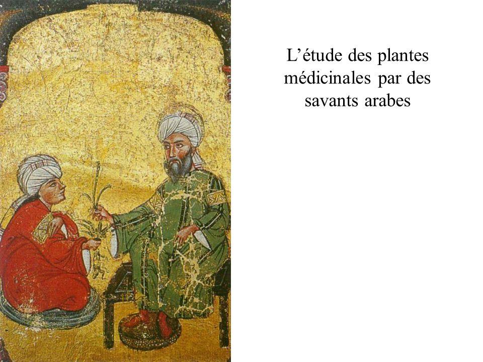 Létude des plantes médicinales par des savants arabes