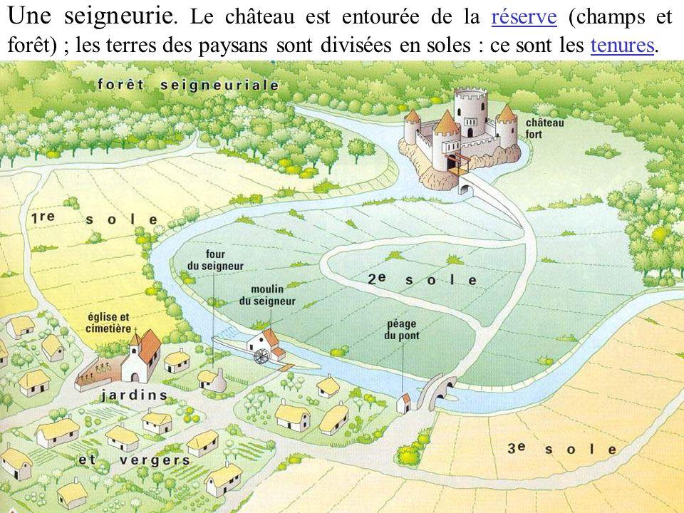 Une seigneurie. Le château est entourée de la réserve (champs et forêt) ; les terres des paysans sont divisées en soles : ce sont les tenures.