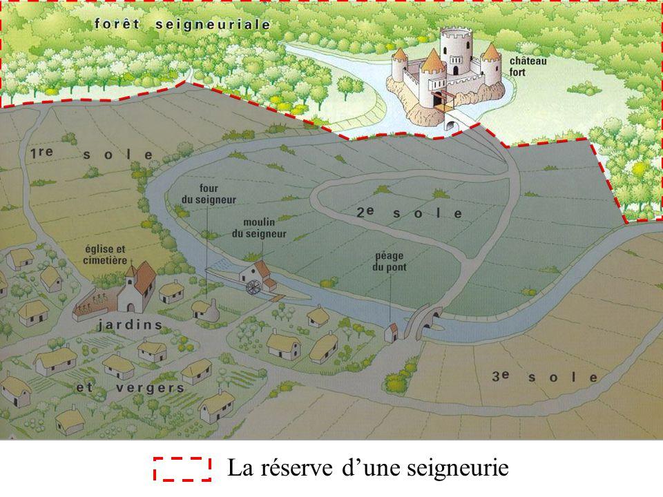 La réserve dune seigneurie