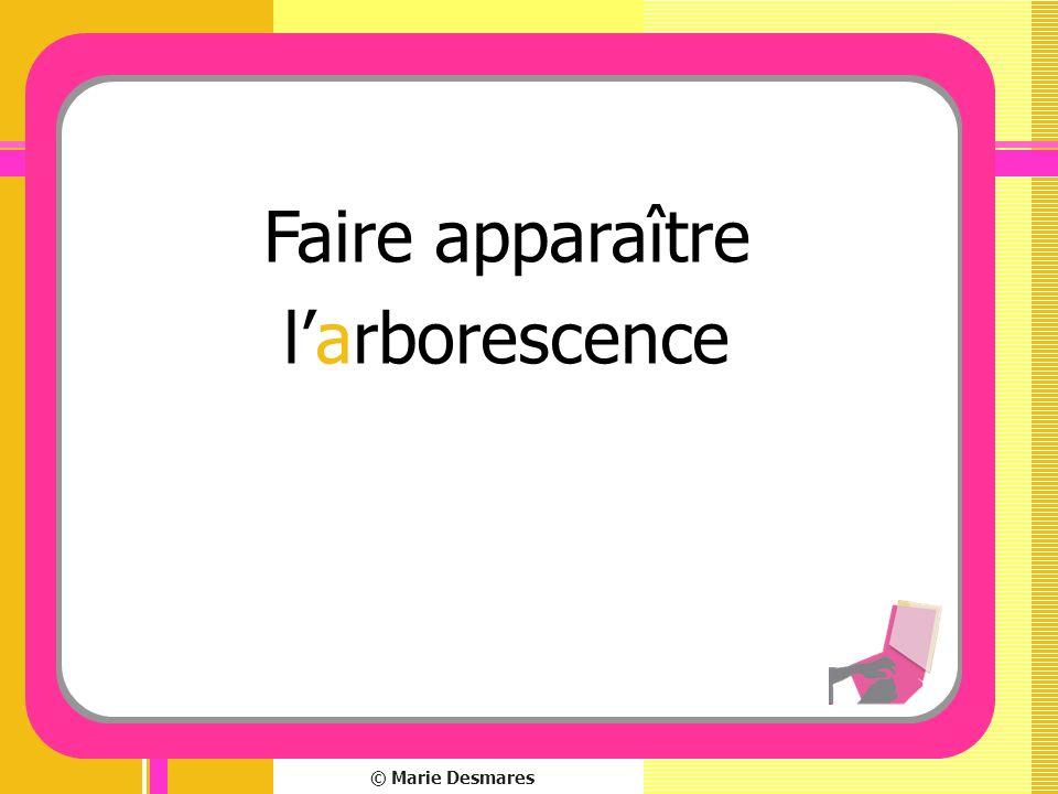 © Marie Desmares Faire apparaître larborescence