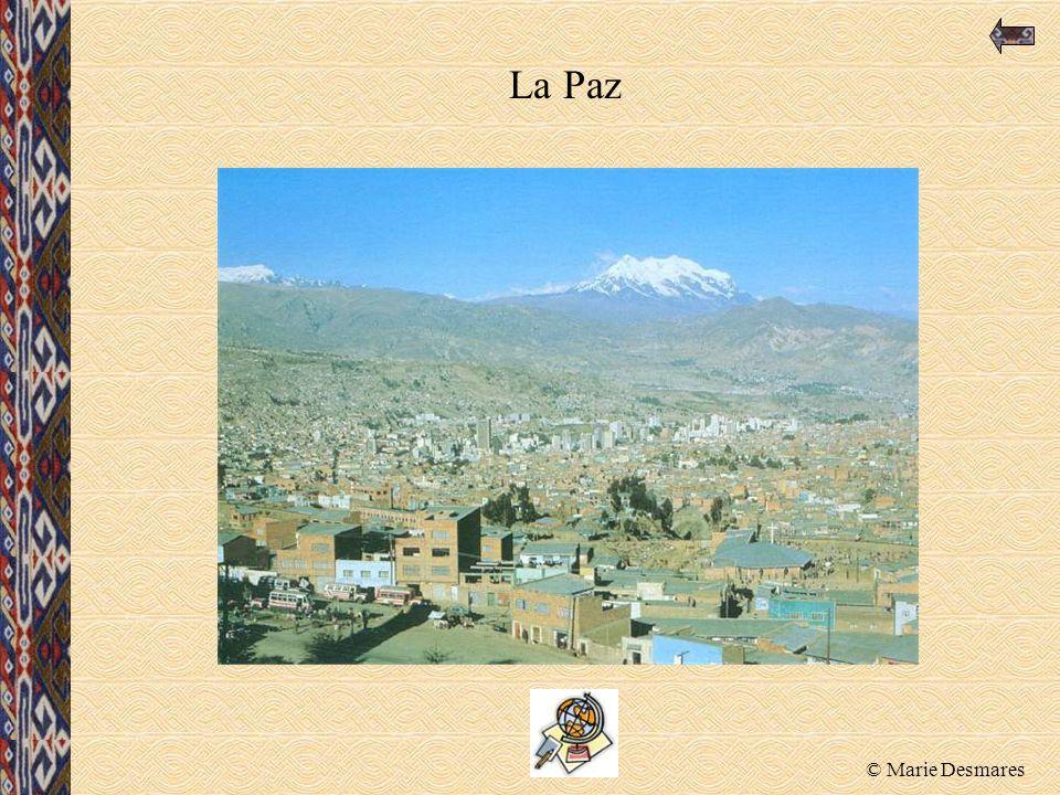 © Marie Desmares La Paz