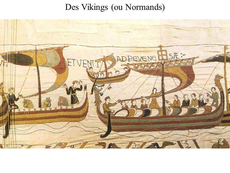 Des Vikings (ou Normands)