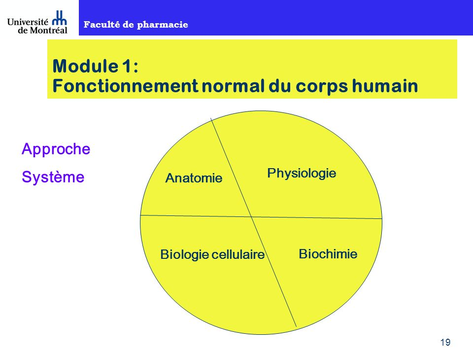 Faculté de pharmacie 19 Module 1: Fonctionnement normal du corps humain Approche Système Anatomie Physiologie Biologie cellulaire Biochimie