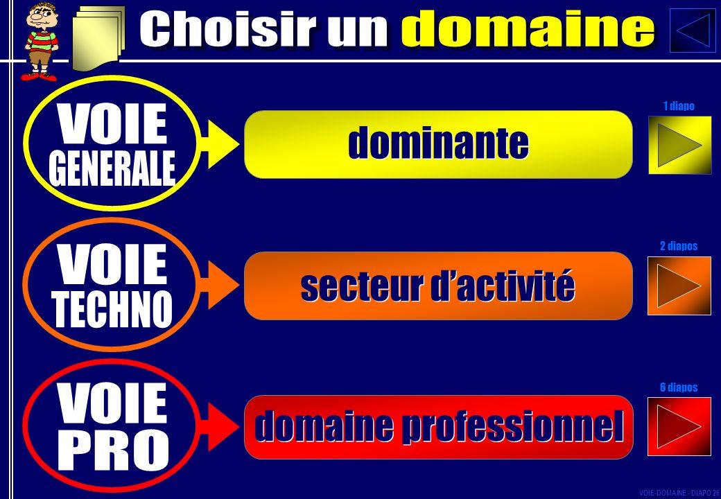 dominante secteur dactivité domaine professionnel 1 diapo 2 diapos 6 diapos VOIE-DOMAINE - DIAPO 26