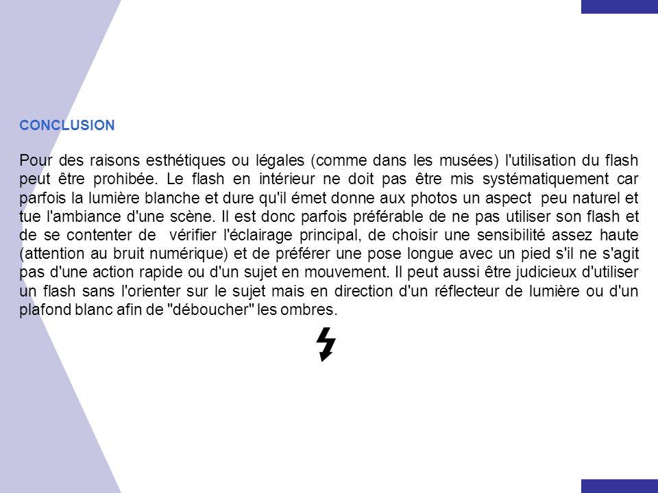CONCLUSION Pour des raisons esthétiques ou légales (comme dans les musées) l'utilisation du flash peut être prohibée. Le flash en intérieur ne doit pa