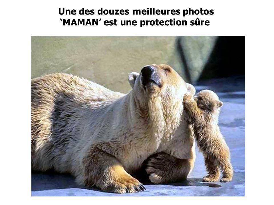 Photo amusante