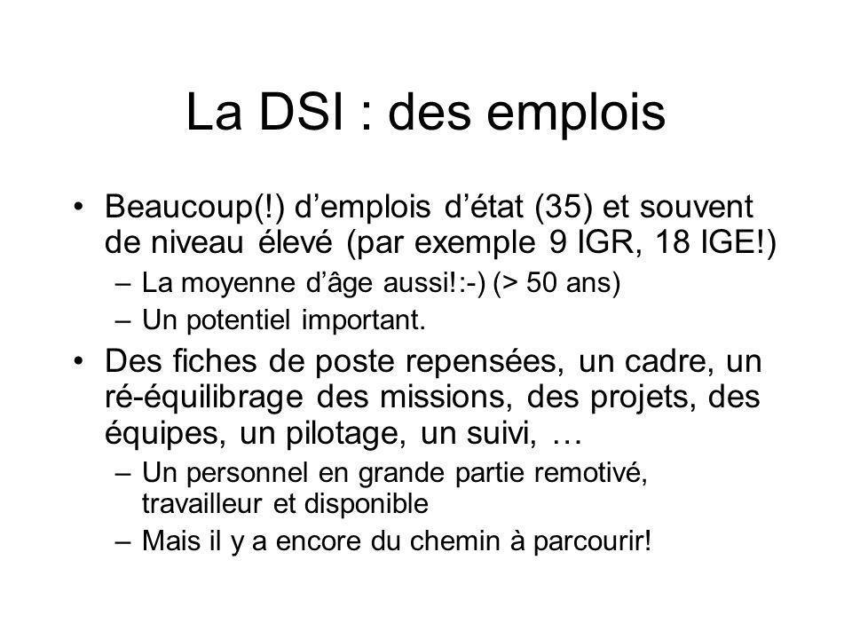 La DSI : des emplois Beaucoup(!) demplois détat (35) et souvent de niveau élevé (par exemple 9 IGR, 18 IGE!) –La moyenne dâge aussi!:-) (> 50 ans) –Un potentiel important.