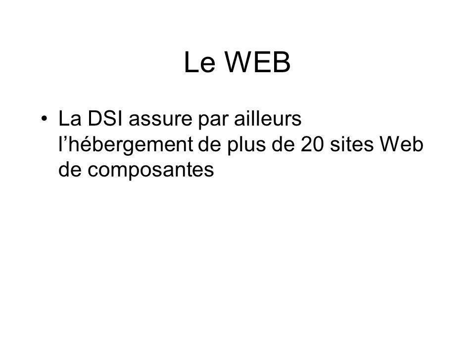 Le WEB La DSI assure par ailleurs lhébergement de plus de 20 sites Web de composantes