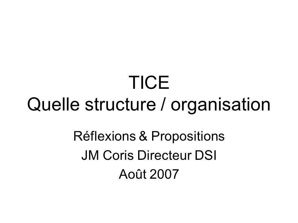 TICE Quelle structure / organisation Réflexions & Propositions JM Coris Directeur DSI Août 2007