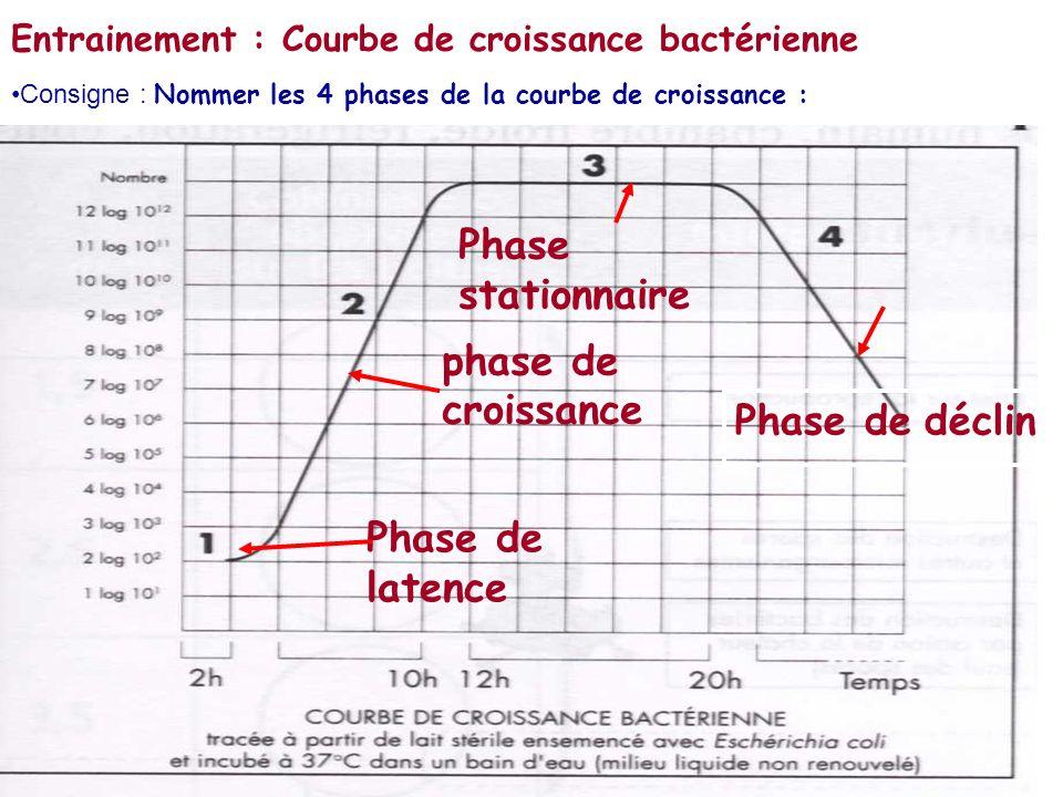 Entrainement : Courbe de croissance bactérienne Phase de latence phase de croissance Phase stationnaire Phase de déclin Consigne : Nommer les 4 phases de la courbe de croissance :
