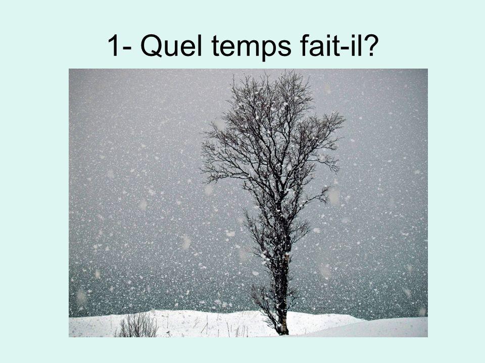 2- Quel temps fait-il?