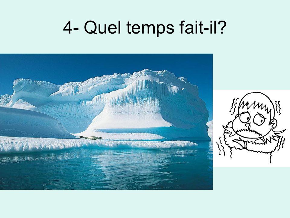 5- Quel temps fait-il?