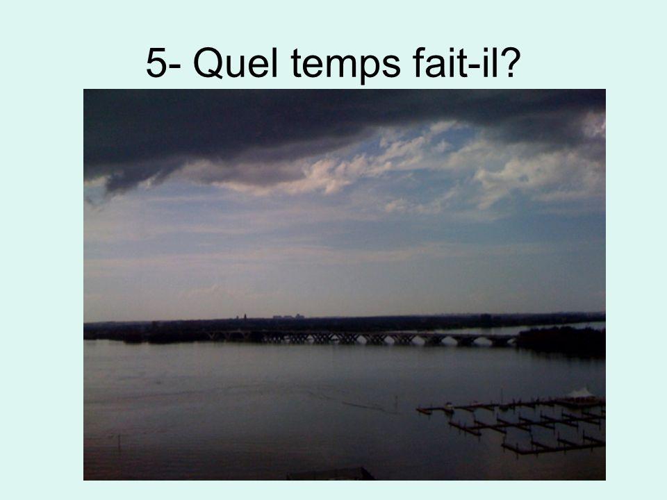 6- Quel temps fait-il?