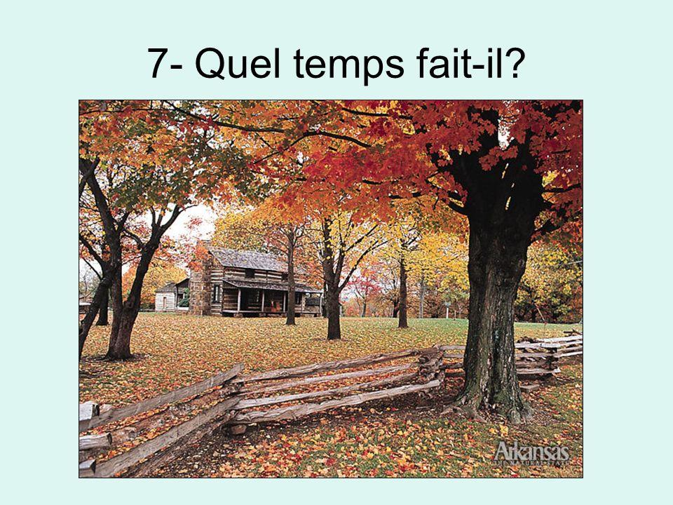 8- Quel temps fait-il?