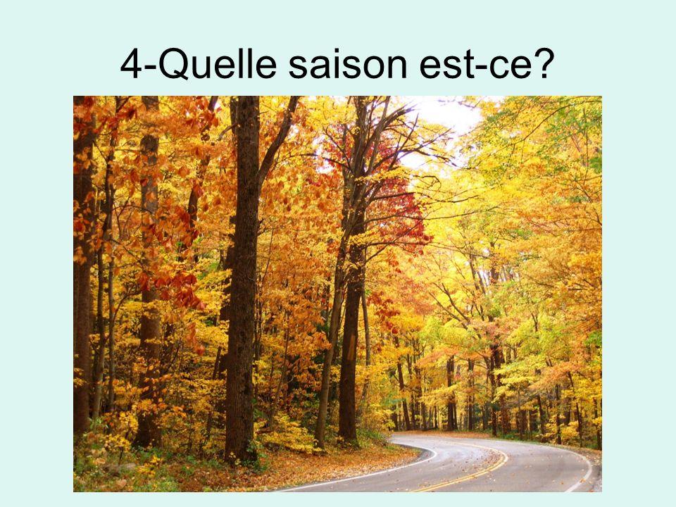4-Quelle saison est-ce?