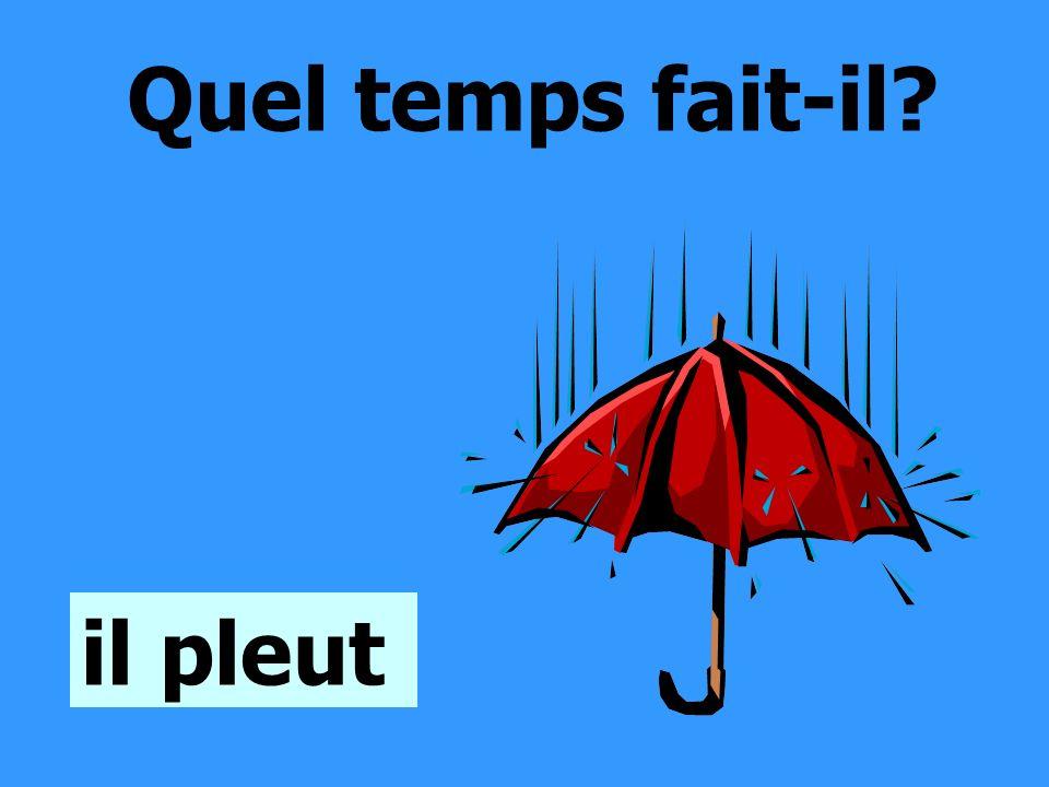 Quel temps fait-il? il pleut