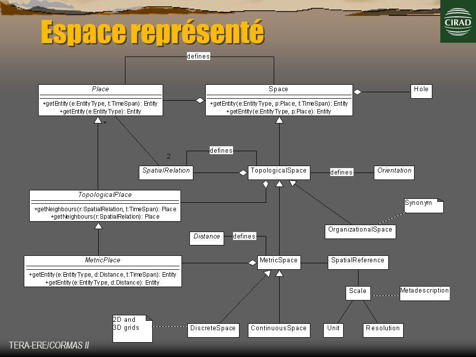 TERA-ERE/ CORMAS II Espace représenté