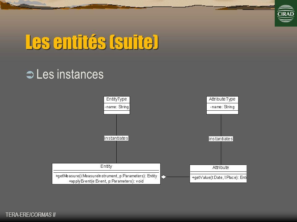 TERA-ERE/ CORMAS II Les entités (suite) Les instances