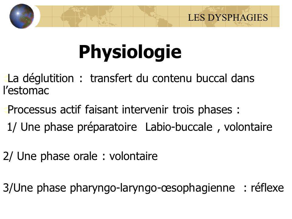La déglutition : transfert du contenu buccal dans lestomac Processus actif faisant intervenir trois phases : 1/ Une phase préparatoire Labio-buccale,