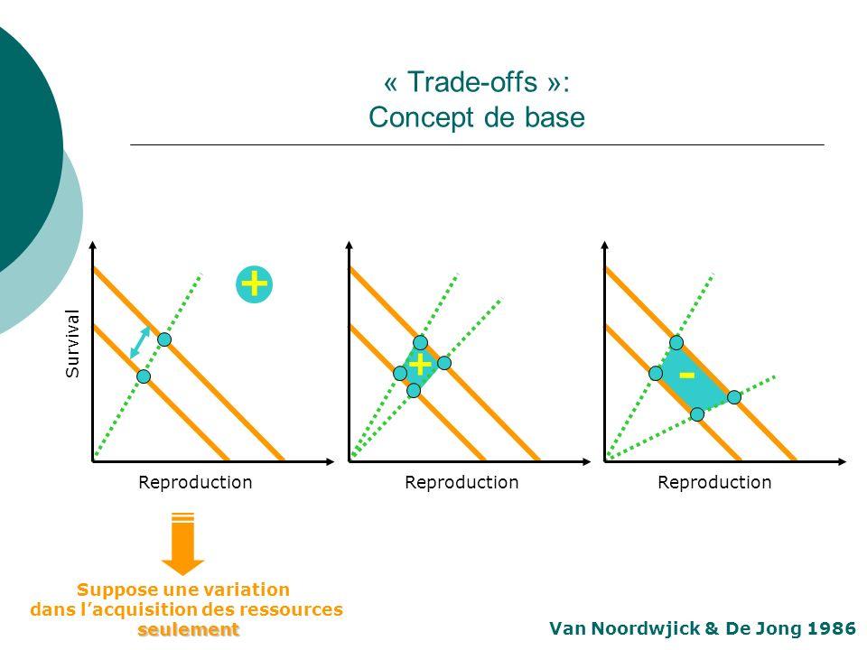 « Trade-offs »: Concept de base - + Van Noordwjick & De Jong 1986 Reproduction Survival Reproduction + Suppose une variation dans lacquisition des res